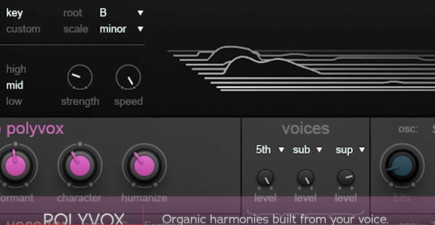 iZotope VocalSynth: finally a really great vocoder plugin!